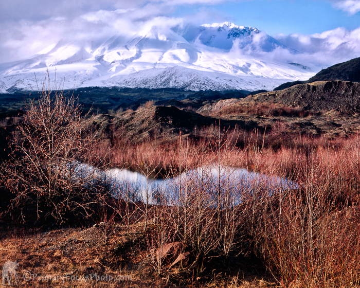 Mt Saint Helens Early Spring
