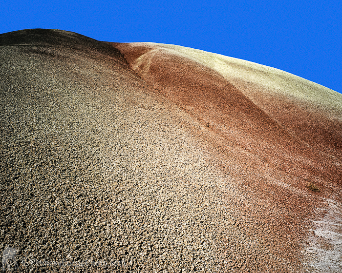 Detail in Painted Hills