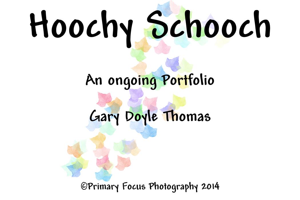 TITLE_HOOCHY_SCHOOCH_JPEG_L